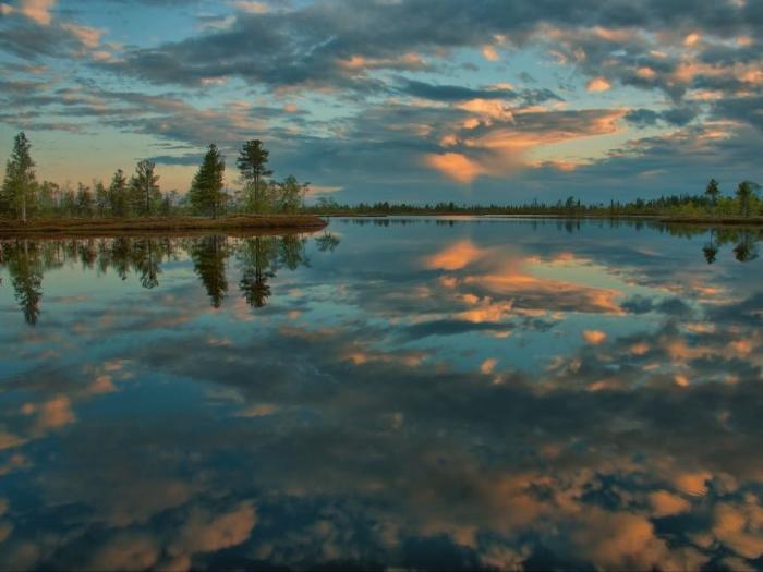 Невероятная красота Васюганских болот фото