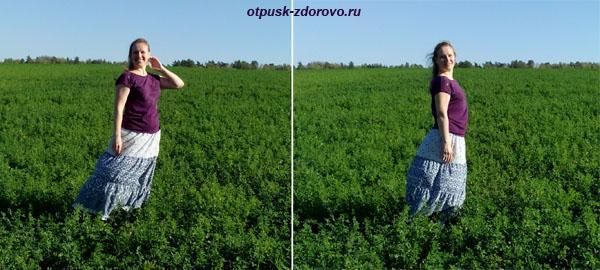 Русский простор, поле клевера, Калужская область