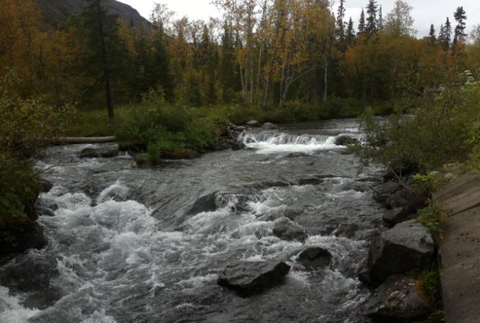 Река Вудъяврйок