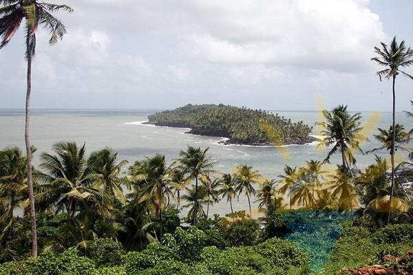 Гаианское побережье
