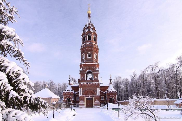 Покровско-Васильевский монастырь зима