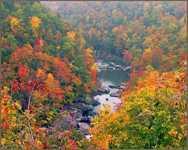 Красивая река в парке Алабамы