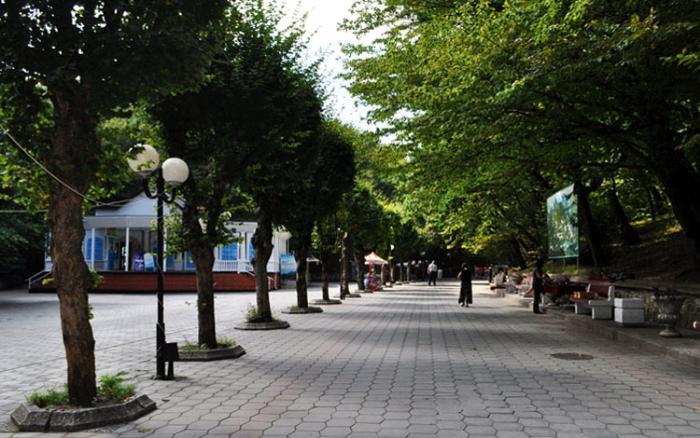 Лечебный (курортный) парк