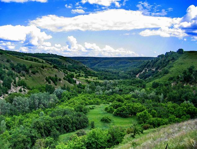 Природный парк «Щербаковский»