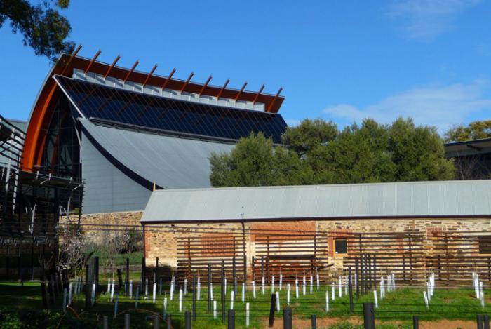 Центр виноделия