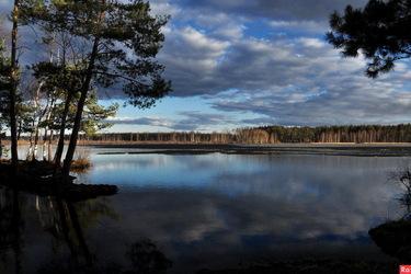 Лесные озера за селом Ласково
