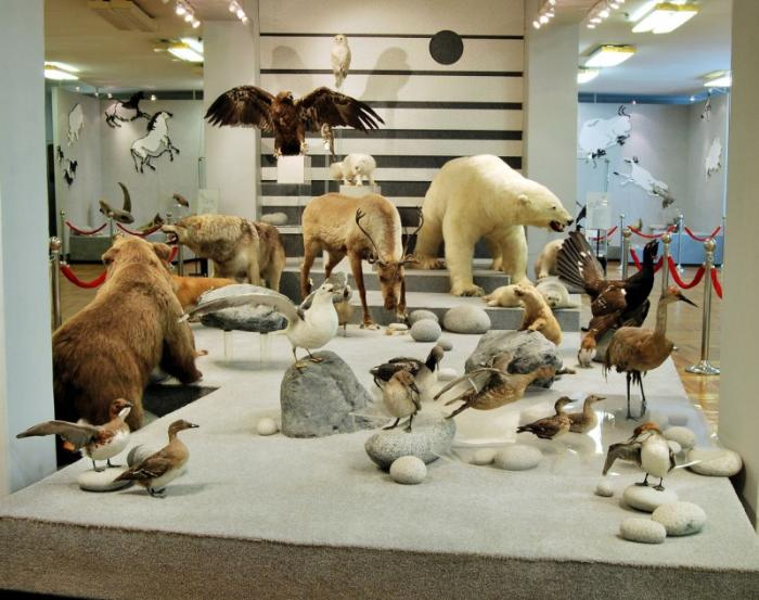 Музеи Магадана