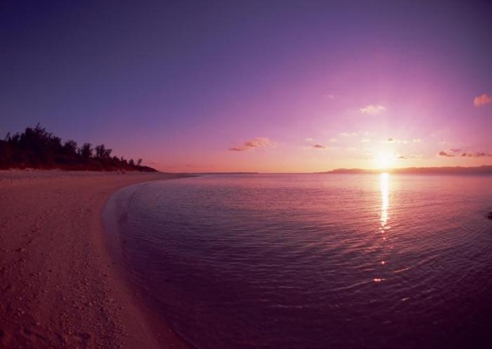 Фиолетовый пляж
