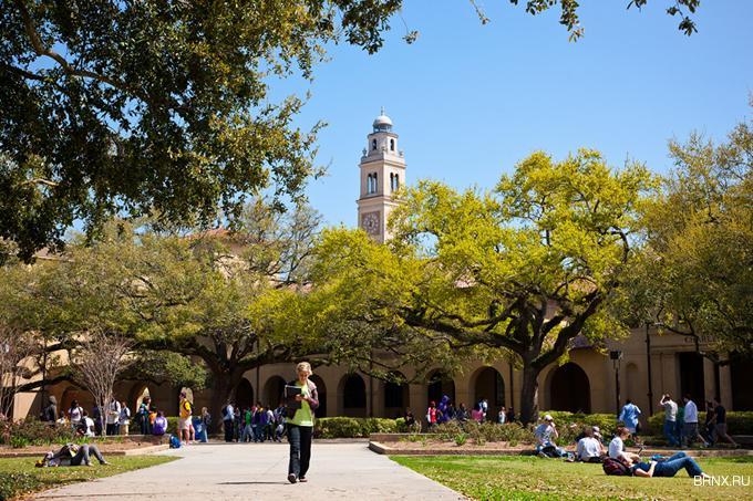 Луизианский университет