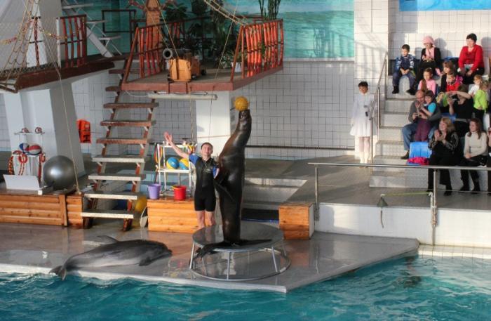 Городской дельфинарий, Набережные Челны