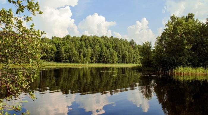 Рубское озеро в ивановской области