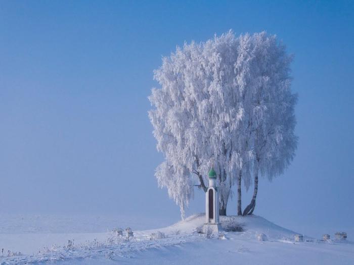 Фото пейзаж по дороге во Вщиж