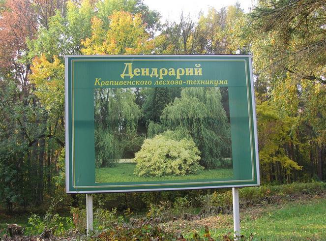 Дендрарий при «Крапивенском лесхоз-техникуме»