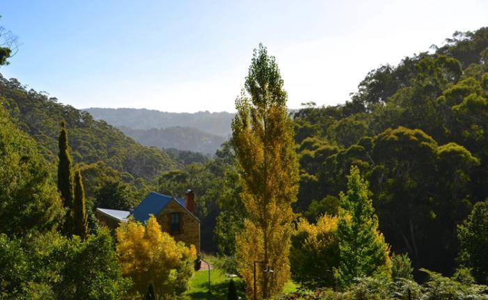 Аделаидские холмы