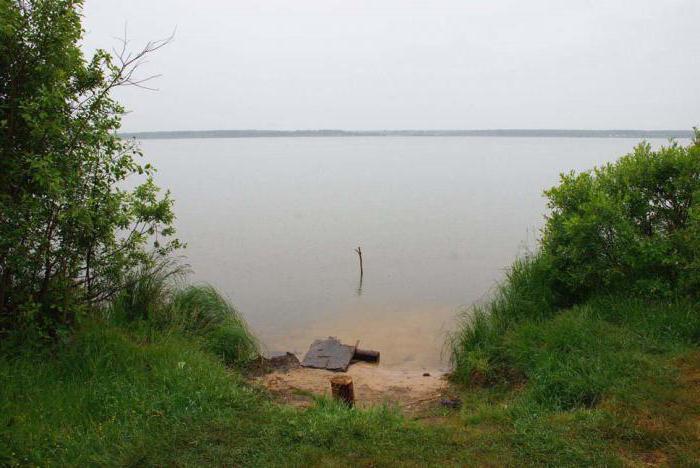 озеро великое спас клепики