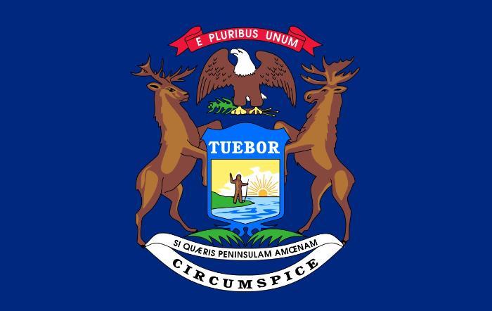 Флаг штата Мичиган