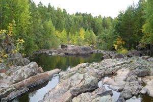 Природа Карелии в районе Марциальных Вод