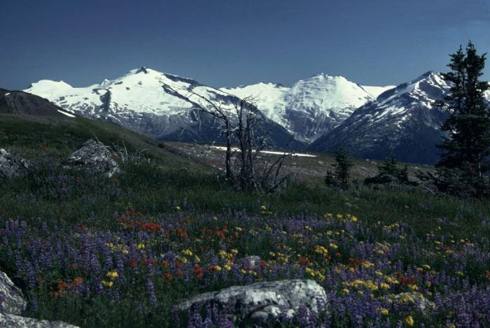 Вершины Британской Колумбии фотография