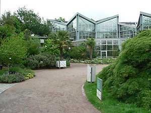 Ботанический Сад «Пальменгартен» во Франкфурте-на-Майне