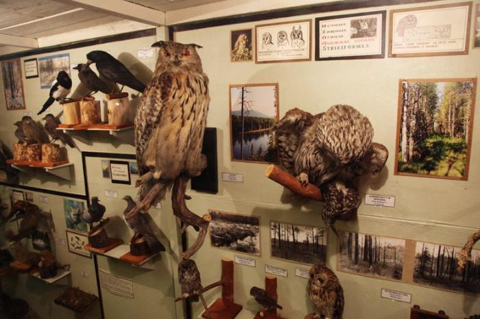 Музей «Природа Земли», Ухта