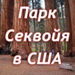парк секвойя