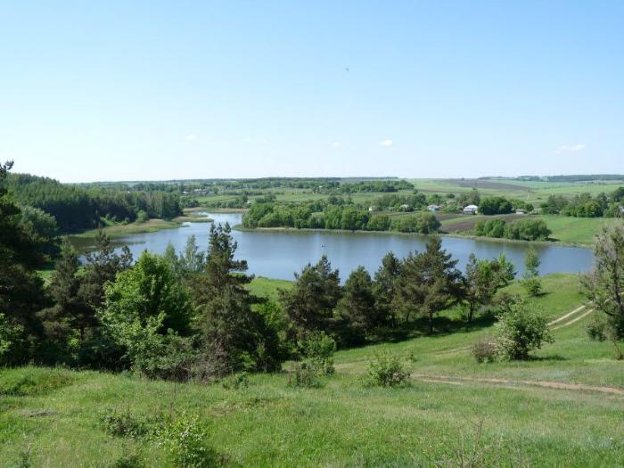 Фото красивой природы Курской области