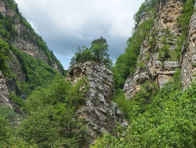 Дигорское ущелье (Северная Осетия)