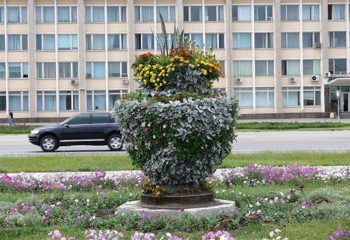 город Железногорск Курская область