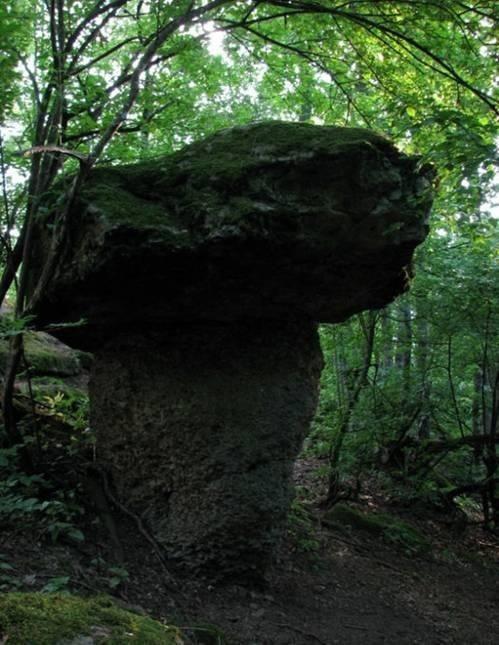 Абинск Краснодарский край отзывы о пмж