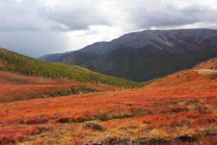 Национальный парк, Кызыл