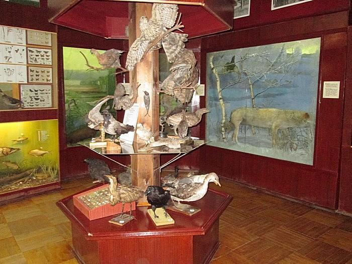 Краеведческий музей Малмыжа