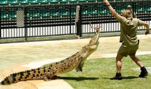 Австралийский зоопарк имени Стива Ирвина