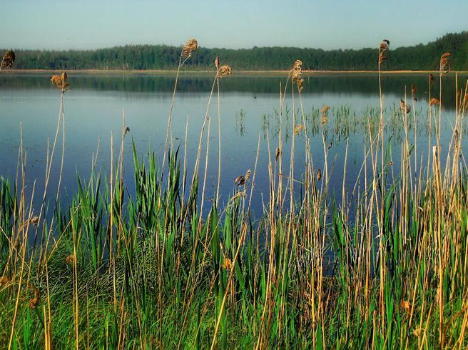 Пырское озеро
