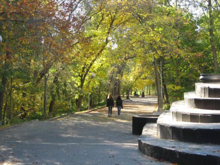 Парк «Дружба»