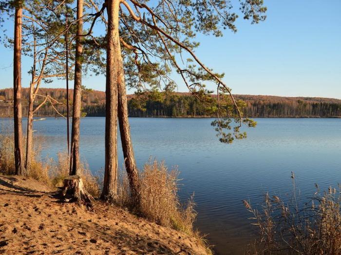 Вид на природу озера Кирек фото