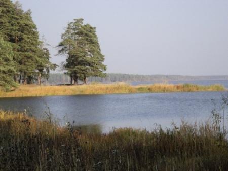 Белохолуницкий район