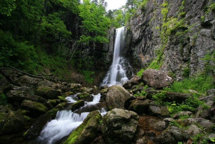Уссурийский государственный природный заповедник