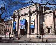 Вид на American Museum of Natural History