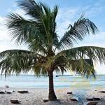Сказочный остров Саона в Доминиканской республике