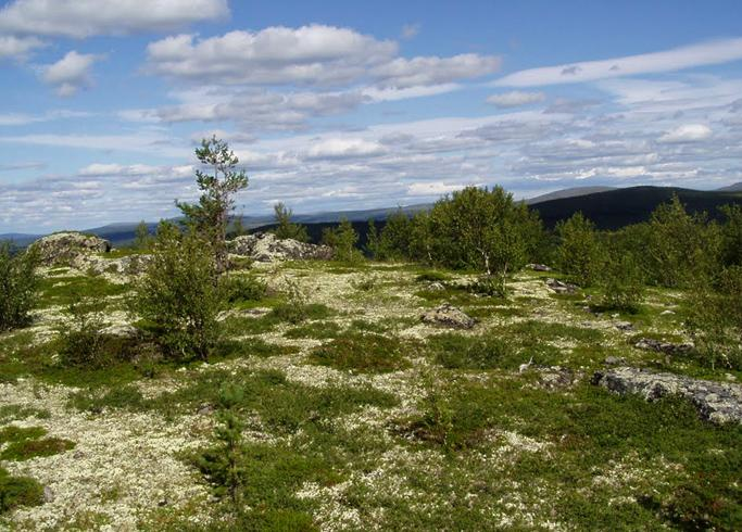 Лапландский государственный природный биосферный заповедник