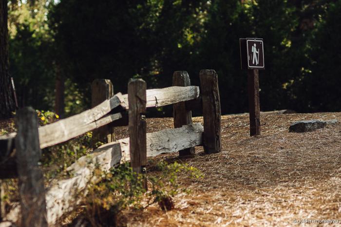 Знак, обозначающий туристическую тропинку в парке Кингз-Каньон, Калифорния, США.