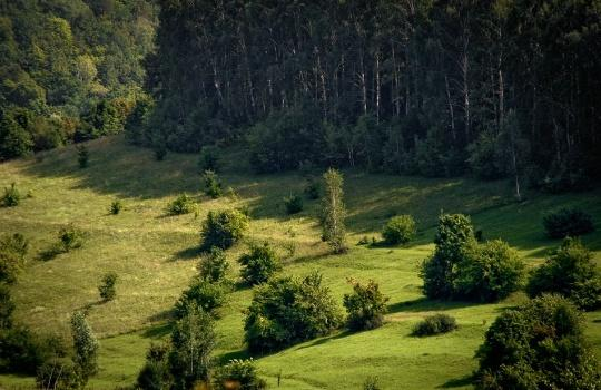 Урочище Монастырская гора, Сызрань