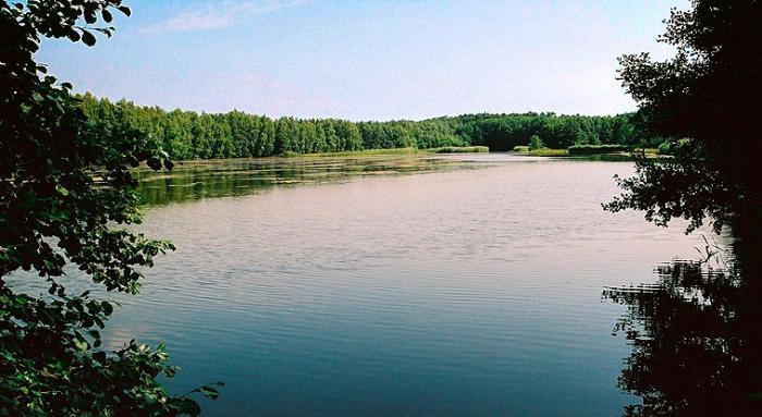 Клестовка, Соликамск