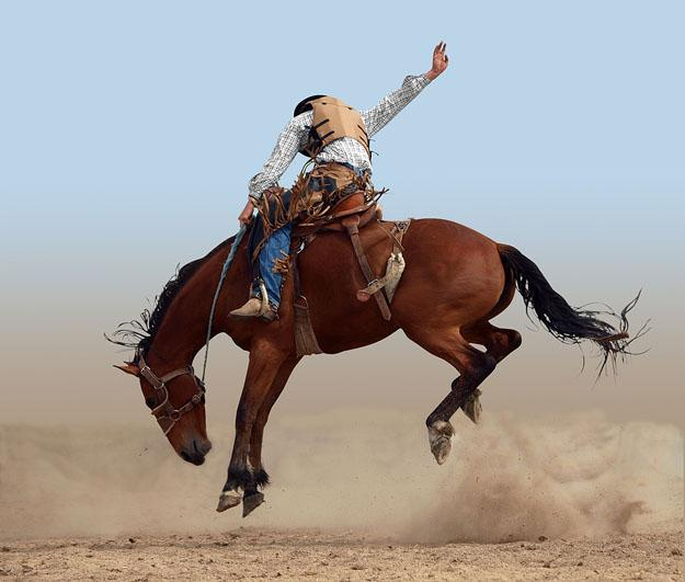 Mid – Western Rodeo.