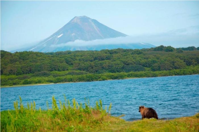 Курильское озеро на Камчатке фото