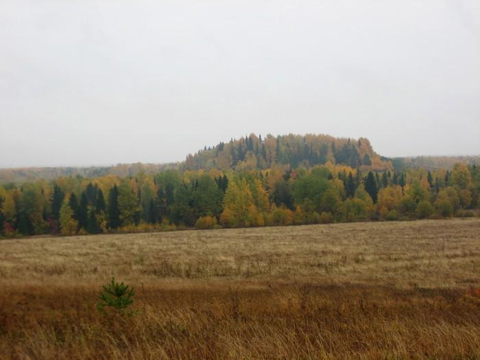Буркова гора, относящаяся к памятнику археологий Гидаевская курганная группа и могильник, IV-XVI вв