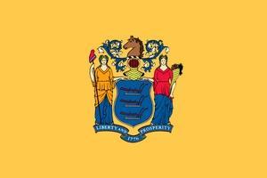 New Jersey. Официальный флаг штата