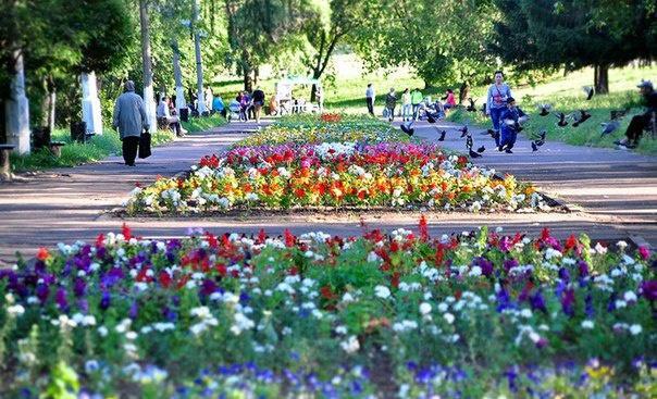 Парк на ул. Первомайской, Кирово-Чепецк